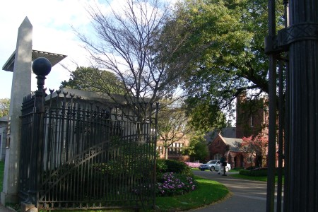 Mount Auburn near the Charles